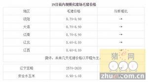 1月19日辽宁省猪评:未来几天毛猪价格以平稳为主