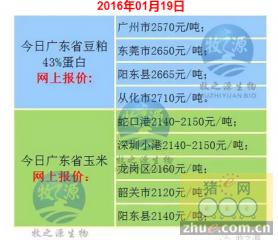 牧之源--广东省1月19日猪价