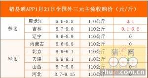 猪易通app01月21日各地外三元价格一览图