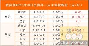 猪易通app01月28日各地外三元价格一览图