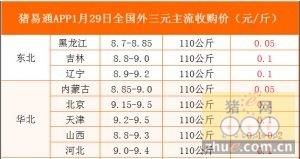 猪易通app01月29日各地外三元价格一览图