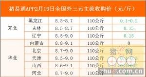 猪易通app02月19日各地外三元价格一览图
