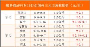 猪易通APP3月16日各地外三元价格表