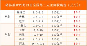 猪易通APP3月21日各地外三元价格表