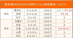猪易通APP3月29日各地外三元价格表