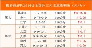 猪易通APP4月14日各地外三元价格表