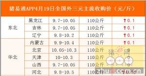 猪易通APP4月19日各地外三元价格表