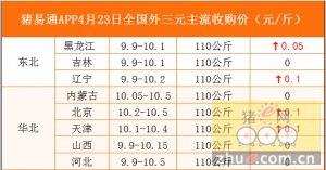 猪易通APP4月23日各地外三元价格表