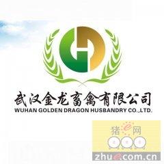 武汉市江夏区金龙畜禽有限责任公司上榜大白种猪十强