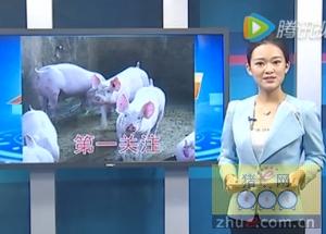 生猪存栏量不升反降 猪周期短期难恢复