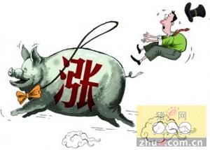 年前猪价何去何从?利空和利好因素将会有哪些变化?