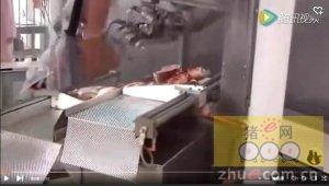 逆天了 德国分割猪肉居然全是机器人操作的