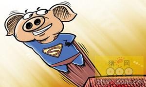 养猪赚大了的企业除了温氏、正邦、牧原等外,还有它们……!