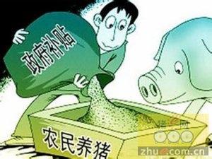 财政部 国家粮食局关于支持实施饲料加工企业补贴政策的通知