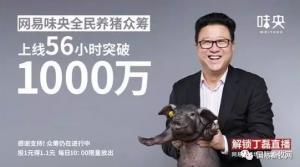 网易味央众筹破1130万 创中国农业众筹总额第一