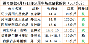 猪易通app4月19日部分企业猪价动态