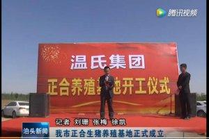 温氏集团:泊头市正合生猪养殖基地正式成立