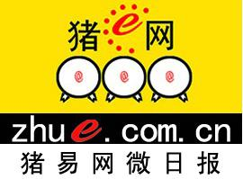 【微日报】多地猪价重回7元/斤 这次要涨多久?