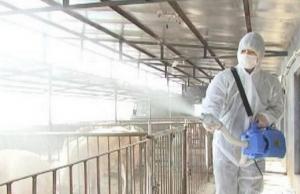 你的猪场是如何做卫生防疫工作的?必须要
