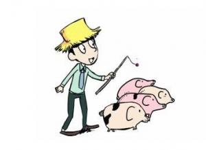 生猪养殖,如何提高饲料利用率