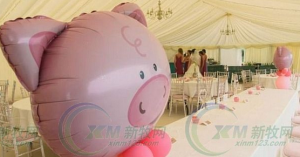 12.3万租50只猪办婚礼,结果……