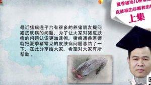 【猪病通-猪猪百科】夏季猪场几种常见皮肤病的诊断和治疗(上)