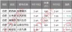 9月10日安徽省猪市行情