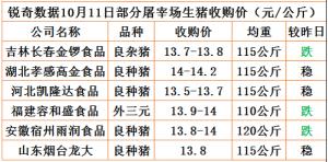 猪易通app10月11日部分企业猪价动态