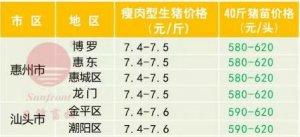 广州日锋-2017年10月11日行情