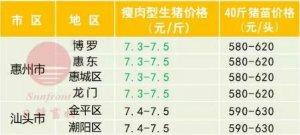广州日锋-2017年10月13日行情