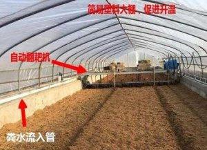 异位发酵床不一样的养猪新模式,或将颠覆传统养猪业!