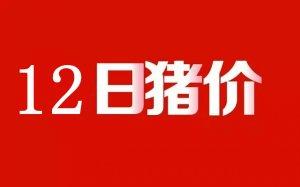 猪易通【11月12日】规模屠宰场晚间动态提醒!