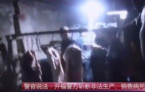 警方打掉非法生产、销售病死猪肉窝点20余处,28人被刑拘