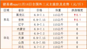 猪易通app11月14日各地猪价走势-窄幅跌涨