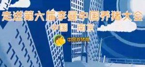 中国养猪网--带你走进第六届李曼中国养猪大会