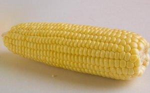 春节前玉米价格走势如何?分析师给出如下