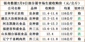猪易通app2月9日部分企业猪价动态