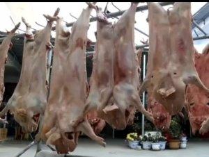 美食安徽:长丰腊仔猪!高师傅做的土猪肉出名!
