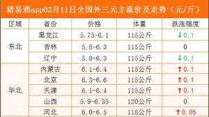猪易通app02月11日各地猪价走势-跌涨互现(放假通知)
