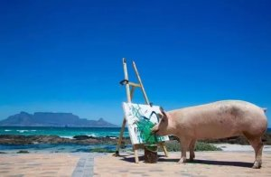 猪画的画能卖27000,赶紧回家养猪了!