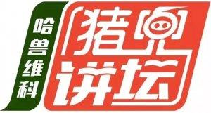 """低成本下如何提高猪场PSY ――第19期""""哈兽维科•猪兜讲坛""""直播节目预告"""