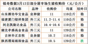 猪易通app3月12日部分企业猪价动态