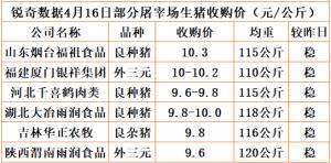 猪易通app4月16日部分企业猪价动态