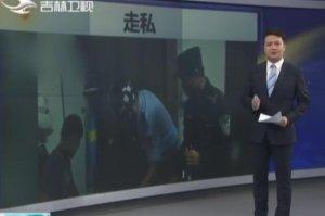 南宁:海关破获重大走私生猪活牛案