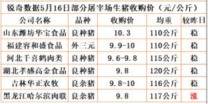 猪易通app18年5月16日部分企业猪价动态