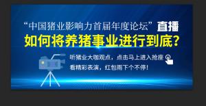 """如何将养猪事业进行到底?""""中国猪业影响力首届年度论坛""""直播,听猪业大咖观点!"""