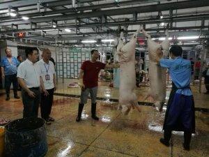 强化生猪屠宰监管 保障肉品质量安全