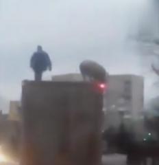 """男子和猪在车顶上""""决斗""""最终猪成功跳下车顶逃脱"""