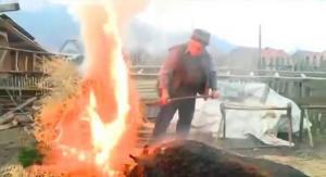 俄罗斯处理猪太特别,500斤的大肥猪直接用火烤,再用盐粒子搓