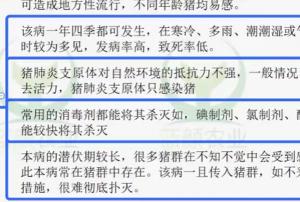 蓝颜养猪:猪支原体肺炎、关节炎防治技术
